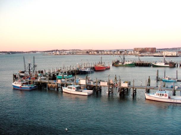 Newport fishing fleet and lobster boats